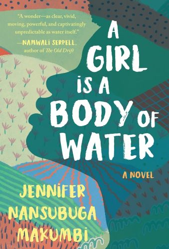 a girl is a body of water - books like americanah