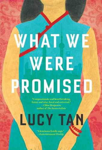 what we were promised - books like americanah