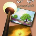 Chiragh e Manzil By Dr Abu Talib Ansari Pdf Download