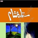 Sitara E Sham Novel Complete By Amna Riaz Pdf