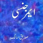 Emergency Novel By Siddique Salik Pdf Download