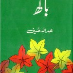 Bagh Novel By Abdullah Hussain Pdf Download