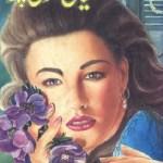 Haya Ki Sooli Par Novel By Mohiuddin Nawab Pdf