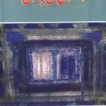 Rishton Ki Baazi Novel By Mohiuddin Nawab Pdf