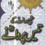 Shama e Risalat Ke 30 Parwane By Talib Hashmi Pdf