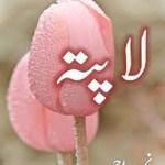 Lapata Novel By Nimra Ahmed Pdf Free Download