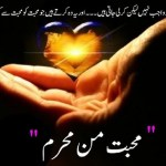 Mohabbat Man Mehram By Sumaira Hameed Pdf