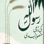 Rasool Allah Ki Zarai Mansooba Bandi Urdu Pdf