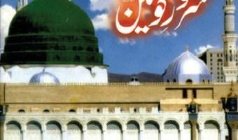 Seerat e Sarwar e Konain By Mufti Ashiq Ilahi Pdf
