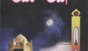 Imam Zain Ul Abideen Urdu By Mufti Ghulam Rasool Pdf