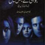 Jawani Ke Jungle Main Novel By Inayatullah Pdf