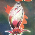 Urdu Novel May Day By Nighat Seema Pdf Free