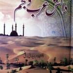 Danish Arab O Ajam By Dr Ghulam Jilani Barq Pdf