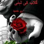 Gulab Ki Tehni Novel By A Hameed Pdf Download