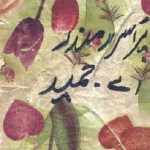 Purisrar Mandir Urdu By A Hameed Pdf Download