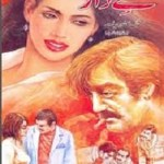 Hissaydar Crime Stories By Malik Safdar Hayat Pdf