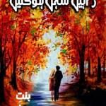 Rahain Sehal Hogain Novel By Binte Imran Pdf