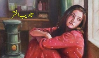 Mailay Log Novel By Tadeeb Akhtar Pdf