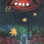Habiba Novel Urdu By Bilqees Zafar Pdf Download