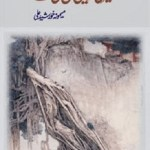 Teri Rah Main Rul Gai Way By Memona Khurshid Ali Pdf