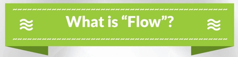 Finding Flow summary_what is flow_title
