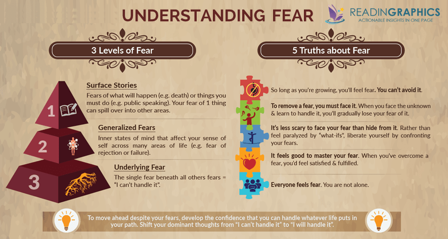 Feel The Fear And Do It Anyway summary_understand fear