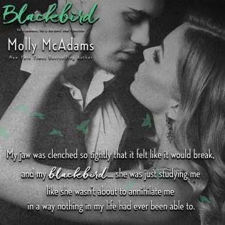 blackbird-teaser-4