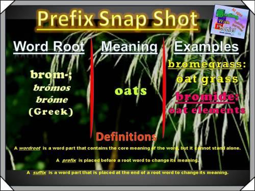 brom-prefix-snap-shot