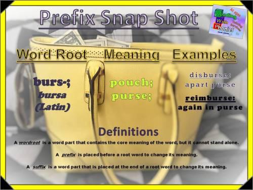 burs-prefix-snap-shot