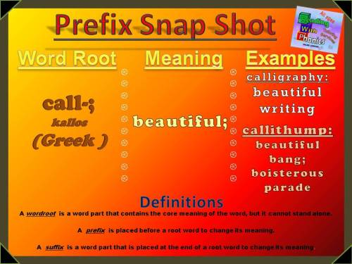 call-prefix-snap-shot