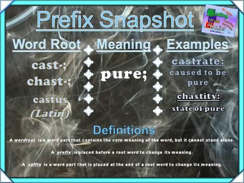 cast-chast-prefix-snapshot