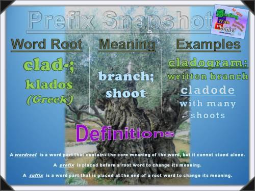 clad- Prefix Snapshot