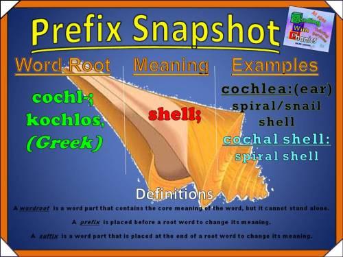 cochl- Prefix Snapshot