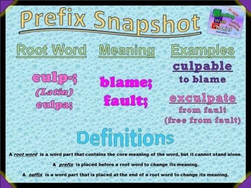culp- Prefix Snapshot