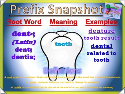 dent- Prefix Snapshot
