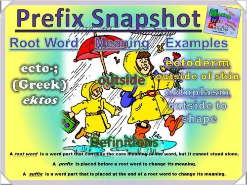 ecto- Prefix Snapshot