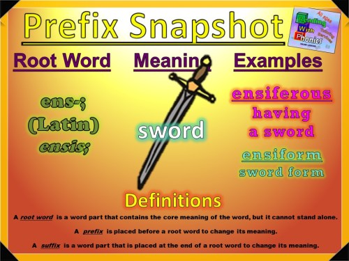 ens- Prefix Snapshot