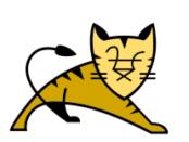 Tomcat Server