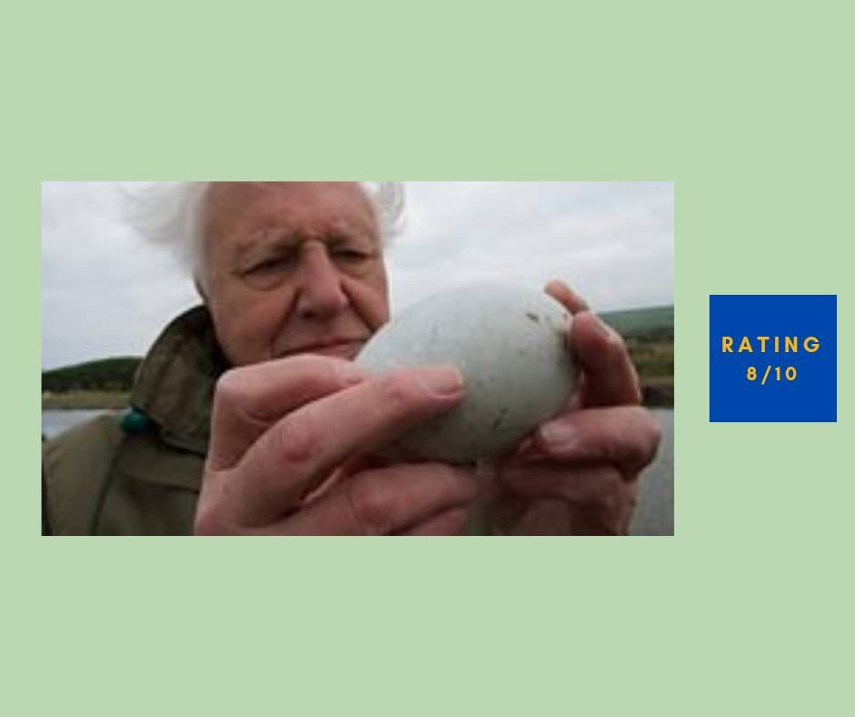 Attenborough's Wonder of Eggs review