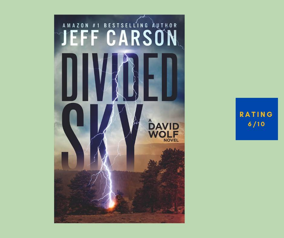 David Wolf Divided Sky review