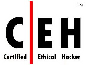 CEH Information Technology Career