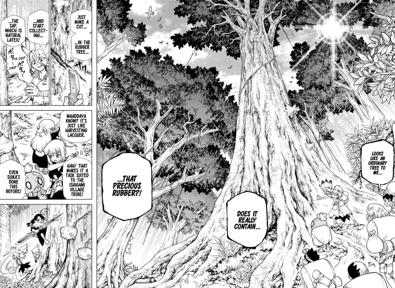 Dr. Stone, Chapter 174 image 011