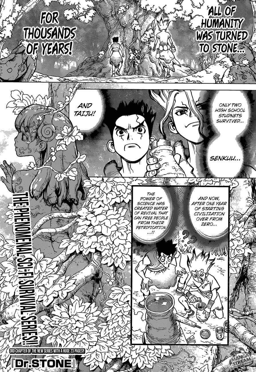 Dr. Stone : Chapter 3 - King of the Stone World image 001