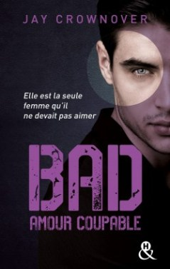 bad,-tome-3---better-when-he-s-brave-737461-250-400