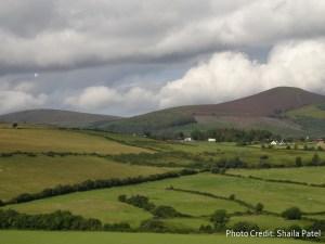 Ireland_Nori2