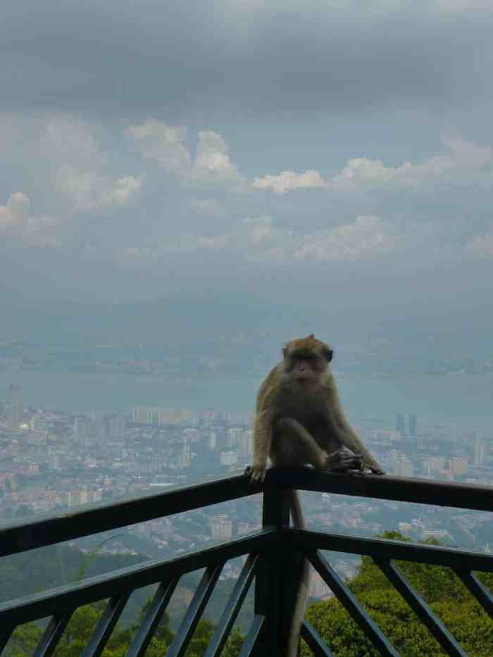 Penang insider tips: Don't miss to visit these Top 10 places in Malaysia