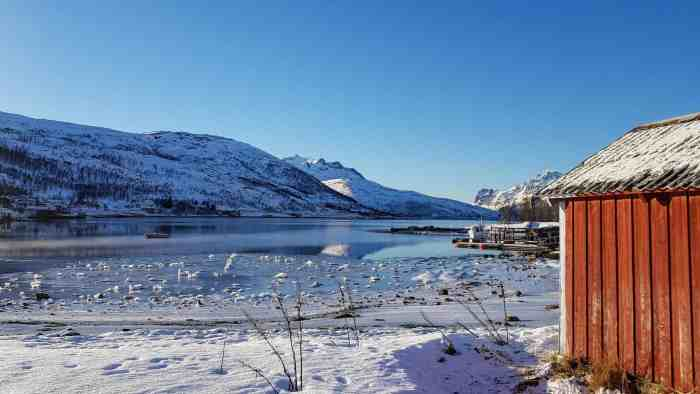 Things to do in Tromsø in winter: Huskies, Nordic lights & spectacular landscape