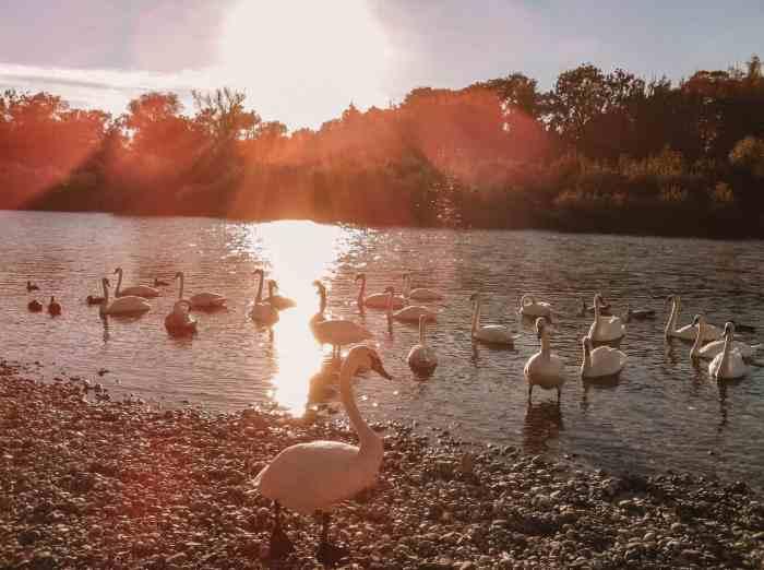 Best lakes to swim in Bavaria - Isar
