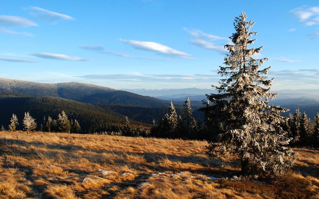 Korona Gór Polski – czyli 31 km przygody