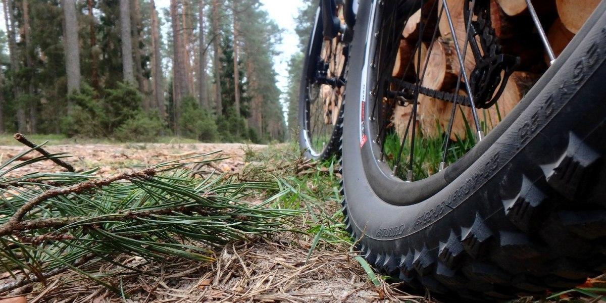 Pojezierze Brodnickie rowerem - mała pętla